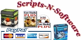 Scripts N Software Biz
