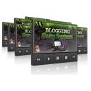 Blogging Guru System Instruction Videos